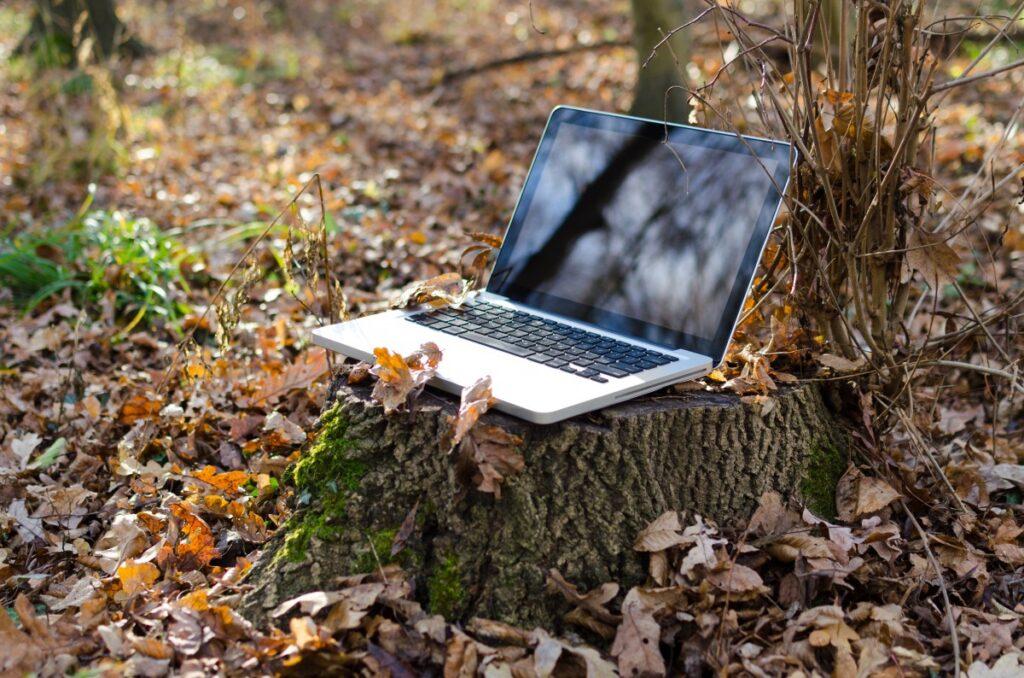 werkplek in het bos